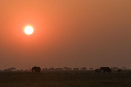 Photo de coucher de soleil au Botswana
