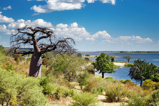 Photo de paysage au Botswana