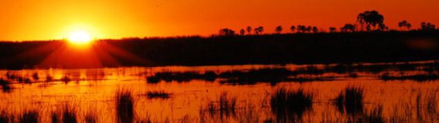 Safari Delta de l'Okavango luxe