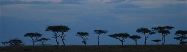 Safari Lac Nakuru luxe