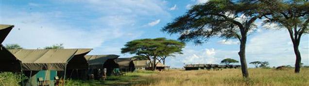 Safari Tarangire luxe
